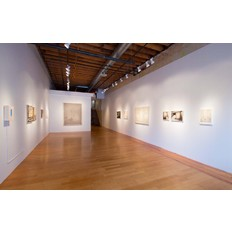 Ryan McLennan Installation View 1