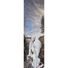 Don Stinson The Rescue: Ouray Ice Fall