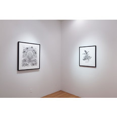 Eric Beltz Installation view