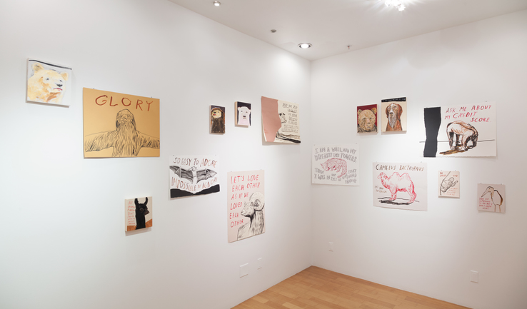 Dave Eggers - Installation view