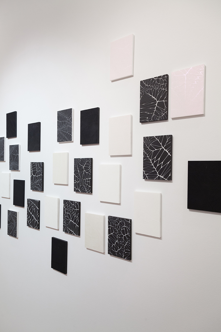 Michael Theodore - Installation view