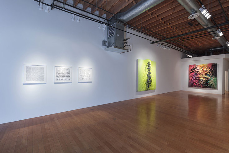 Chris Oatey & Dylan Gebbia-Richards - Installation view