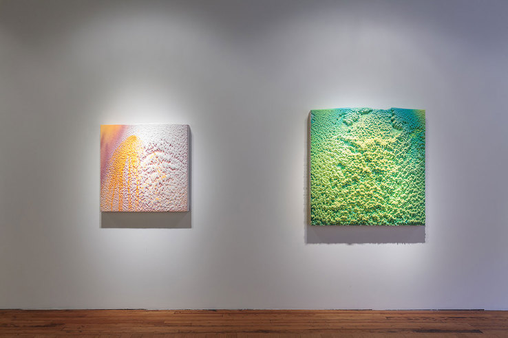 Dylan Gebbia-Richards - Installation view