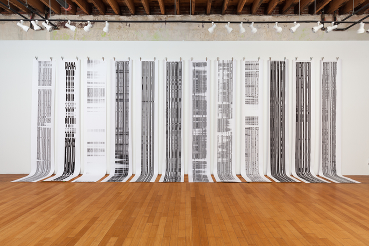 Joel Swanson - Installation view