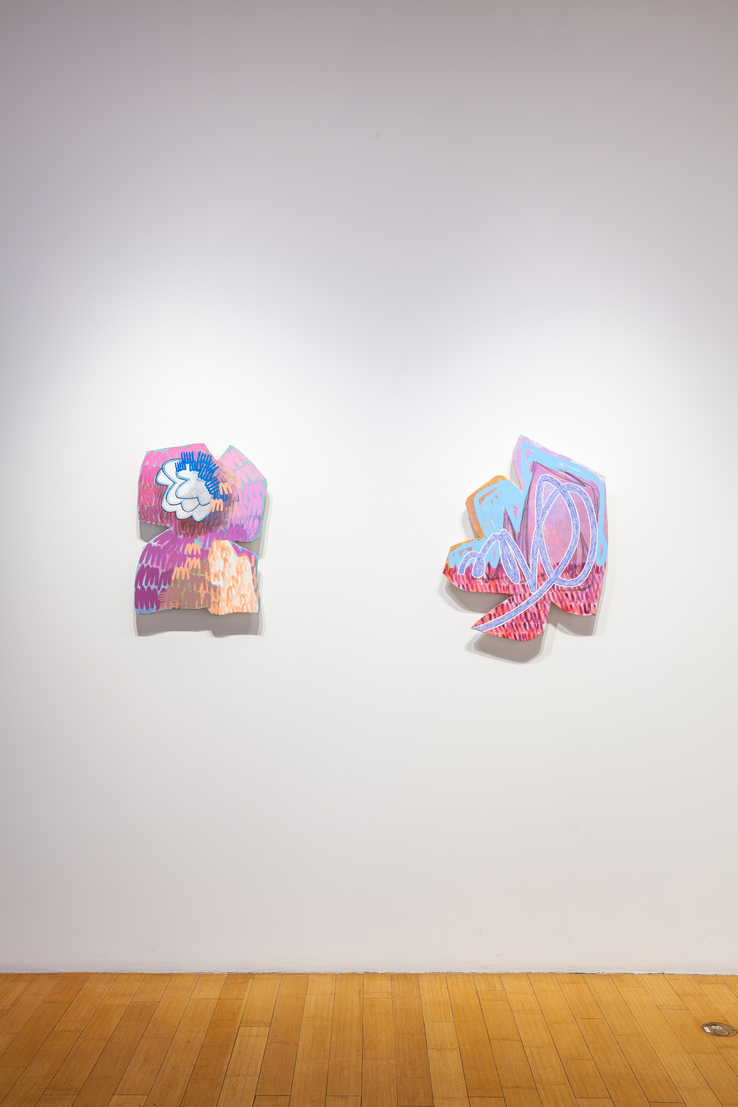 Robert Burnier & Justine Hill - Installation view