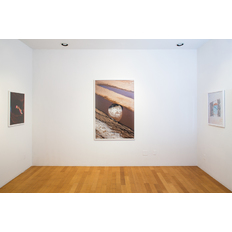 Mikayla Whitmore Installation view