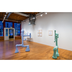Amber Cobb Installation view